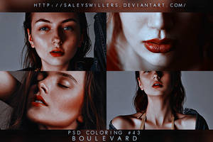 PSD COLORING #43 [BOULEVARD] by irwinbae