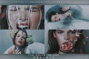 PSD COLORING #60 [PRAIRIE] by irwinbae