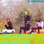 Mega Pack de One Direction.