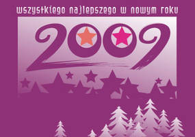 2009 nev year by 222--C-M--555