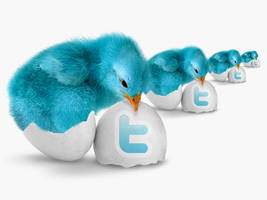 Blue Bird Twitter Icon Pack