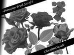 GreyRose--Photoshop brush set