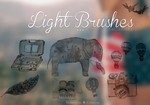 Light Brushes || Clari