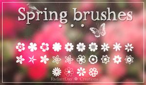 Spring Brushes || Clari