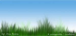 Soft Grass Brushes