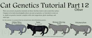 Cat Genetics Tutorial Part 12 (Other)