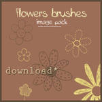 Image pack flowers brushes