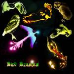Belladona-Fairy Bird Brushes