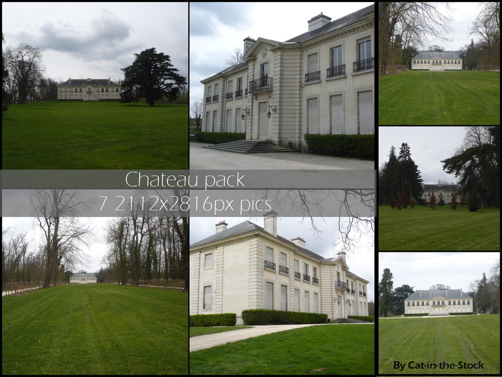 Chateau pack by Cat-in-the-Stock