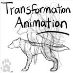 Chel -Shift Animation Test