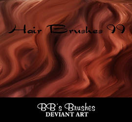 Hair Brushes II by BBs-Brushes