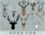 Deers Pack