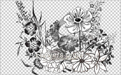 FLOWERS PNGS by s3cretlady
