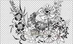 FLOWERS PNGS