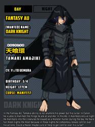 The Dark Knight - Fantasy AU - Ref Sheet - GIF