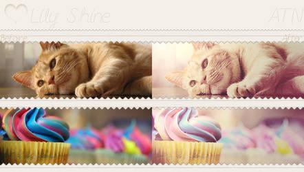 Lily shine - ATN