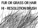 Fur_Grass Or Hair HiRes Brush