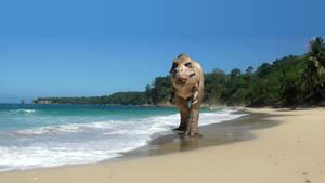 WIP (Update 4) - Trex Walking On The Beach