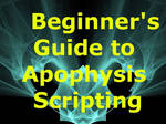 Beginners Guide to Scripting