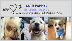 Cute Puppies (100x100 bases) - Kakapum@lj
