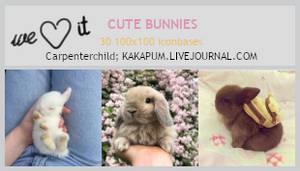 Cute Bunnies (100x100 bases) - Kakapum@lj