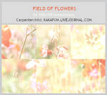 Field of Flowers -100x100icontextures (Kakapum@lj)