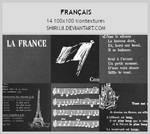 Francais -100x100icontextures
