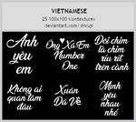 TEXT16: Vietnamese -100x100icontextures