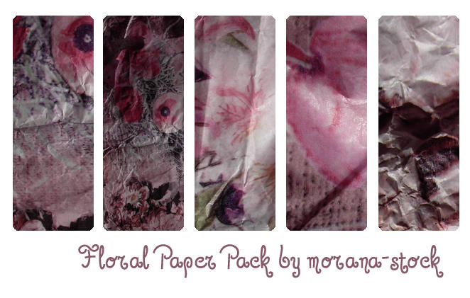 Floral Paper Pack by morana-stock
