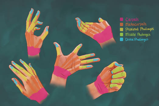 Drawing Hands- Tutorial +Tips