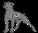 P2U American Bulldog Lineart