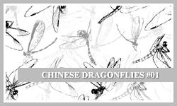 PS7 Brushes: Chinese D-flies by SacredLies