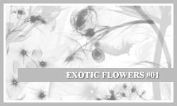 PS7 Brushes: Exotic Flowers