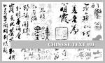 PS7 Brushes: Chinese Text 3