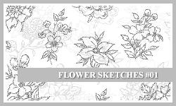 PS7 Brushes: Flower Sketches by SacredLies