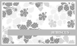 PS7 Brushes: Hibiscus