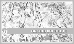 PS7 Brushes: Orchid Bouquets by SacredLies