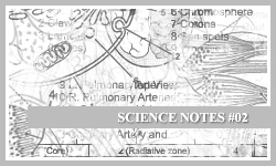 PS7 Brushes: Science Notes 2 by SacredLies