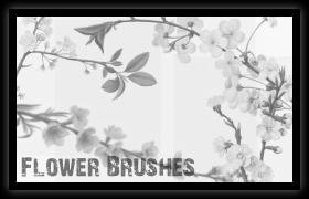 Flower brushes by libertfly
