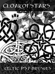 Celtic Brushes PS7