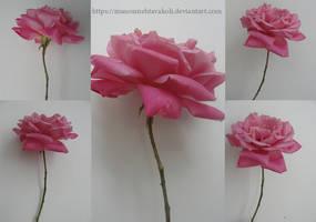 Flower Pack by DigitalDreams-Art