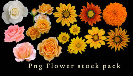 Png Flower Stock Pack