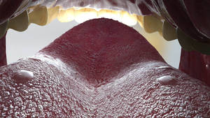Milena's tongue - view from throat
