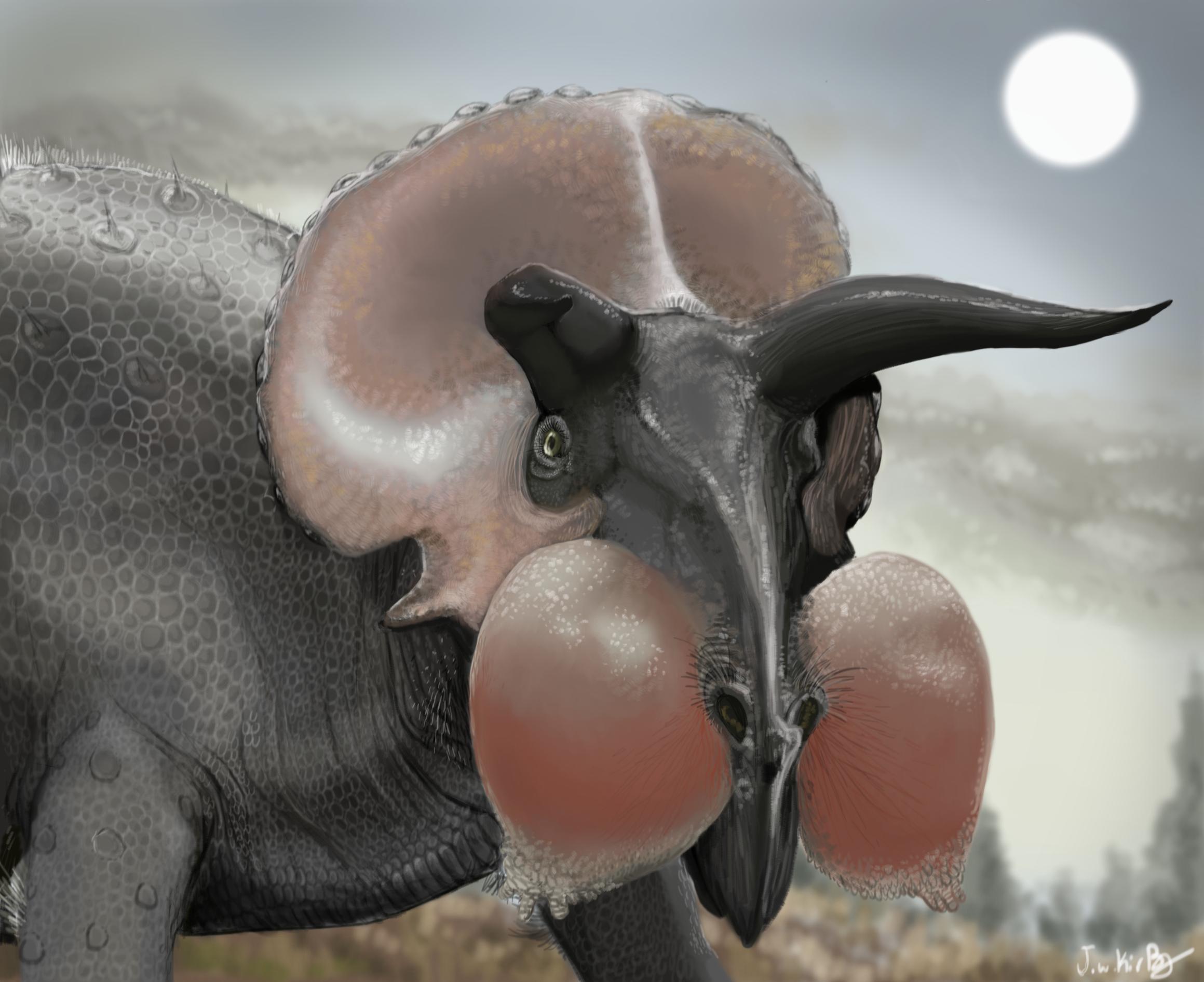 New Look Triceratops? by KirbyniferousRegret