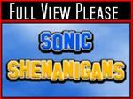 Sonic Shenanigans Intro
