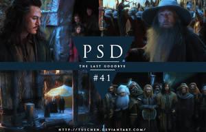 PSD #41 by tuschen