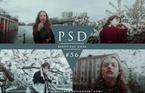 PSD #56 by tuschen