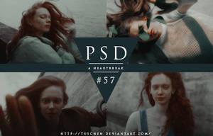 PSD #57 by tuschen