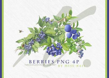 Berries Png by MISS-K611