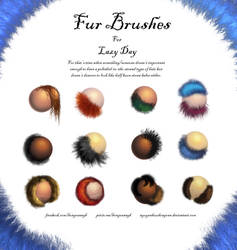 Fur Brush For Lazy Days by NguyenHuuHongVan